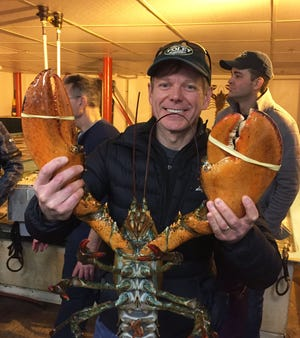 John Korycki, executive chef at Harbor House, handles a large lobster in Boston.