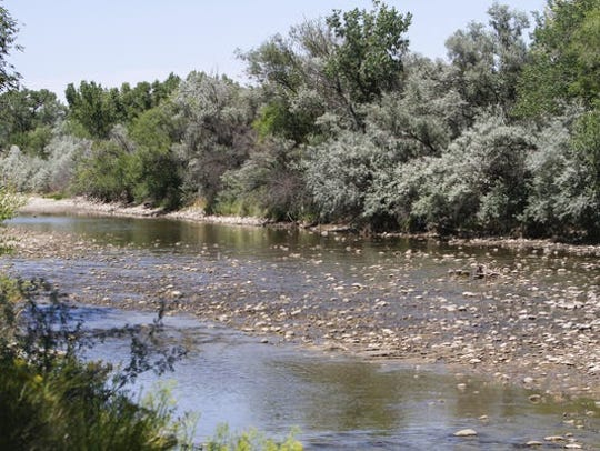 The Animas River nearly ran dry through Farmington last summer, but it has remained full of water this year.