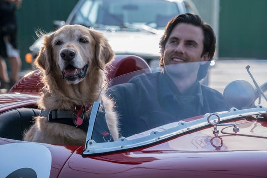 "And older Enzo and Denny (Milo Ventimiglia) go for a ride in ""The Art of Racing in the Rain."""