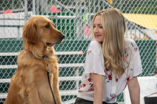"Golden retriever Enzo (voiced by Kevin Costner) discovers that his human's significant other Eve (Amanda Seyfried) is an ""unexpected"" circumstance in their bachelor racing lifestyle in ""The Art of Racing in the Rain."""