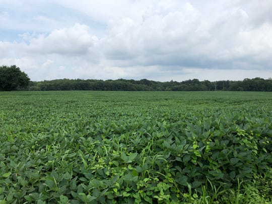 The 650-acre site at the Frenchtown Road and Md. 213 is mostly farm land and woods.