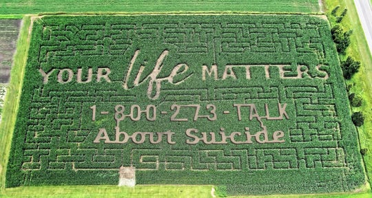A photo of a themed corn maze, which was posted on Facebook, at Govin's Meats and Berries farm in Wisconsin.