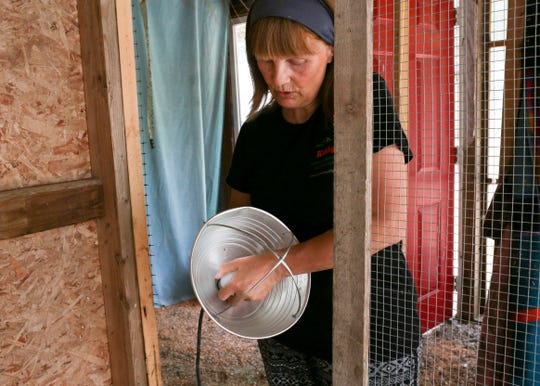 Kathy Parker screws in an incandescent bulb instead of the normal, higher-wattage heat lamp bulb for use in her bird coop. The Kitsap County Fire Marshal's Office is trying to educate bird owners about the danger of heat lamps, which have caused life-threatening fires in the county.