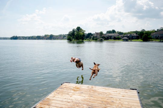 Get ready for more hot and sticky weather this week! Perhaps try staying cool like Ethan Fulford, who, along with his one-year-old puppy Loki, enjoyed jumping off the docks at Carl Cowan Park into Lake Loudoun last month.