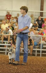 Zane Trace High School's Keagan Smith won the Pygmy Goat Master Showmanship Championship at the 2019 Ross County Fair on Sunday August 4, 2019. Smith is a part of the Clover Bees 4-H Club.