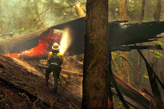 In this Aug. 26, 2015, file photo, firefighter Jay Flora sprays a hot spot on a downed tree along the Trail of Cedars across the river from Newhalem, Wash.