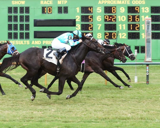 Florent Geroux rode Factor This to victory in the Kentucky Downs Preview Kentucky Turf Cup at Ellis.