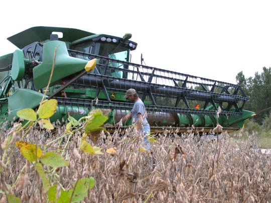 Farmer Jeremy Cannon checks his combine as he gets ready to rush the harvest of his soybean crop on Wednesday, Oct. 5, 2016, at his farm in Turbeville, S.C. Cannon and other farmers are worried Hurricane Matthew could flood fields and knock down crops. (AP Photo/Jeffrey Collins)