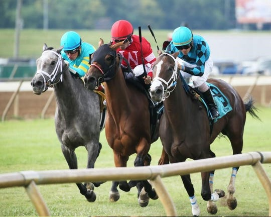 May Lily, center, edges heavy favorite Surrender Now, right, and Arabella Bella, left, to win the Kentucky Downs Preview Ladies Sprint Sunday at Ellis Park.