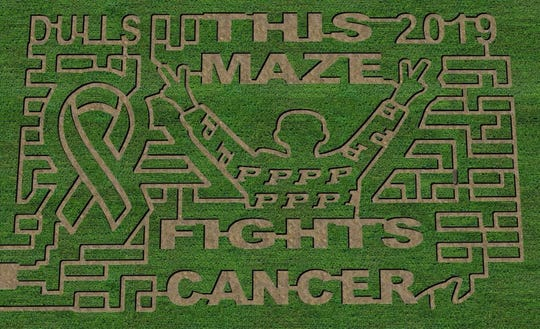 The concept art for this year's corn maze at Dull's Tree Farm in Boone County.