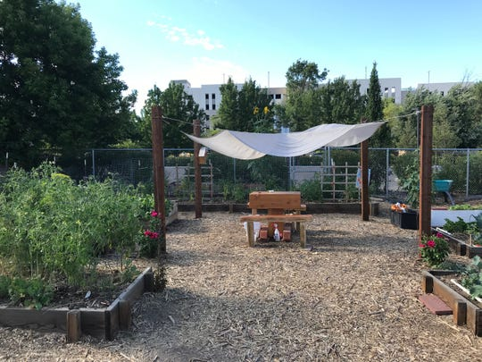 Soulful Seeds, a Reno nonprofit, feeds folks in need from its community garden lying off an alley just south of West Sixth Street in downtown.
