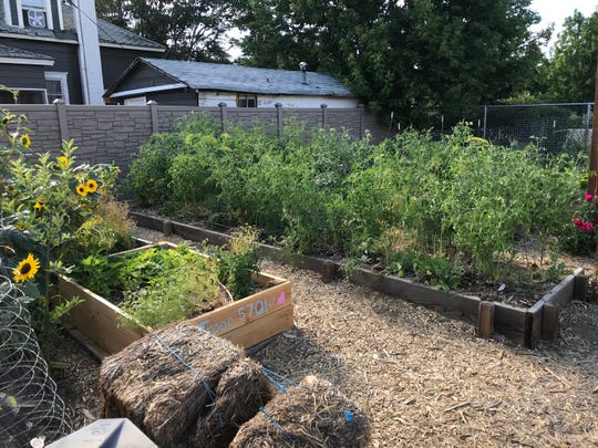 Soulful Seeds is offering a tour of its community garden to kick off the debut Reno Local Food Week on Aug. 11, 2019.