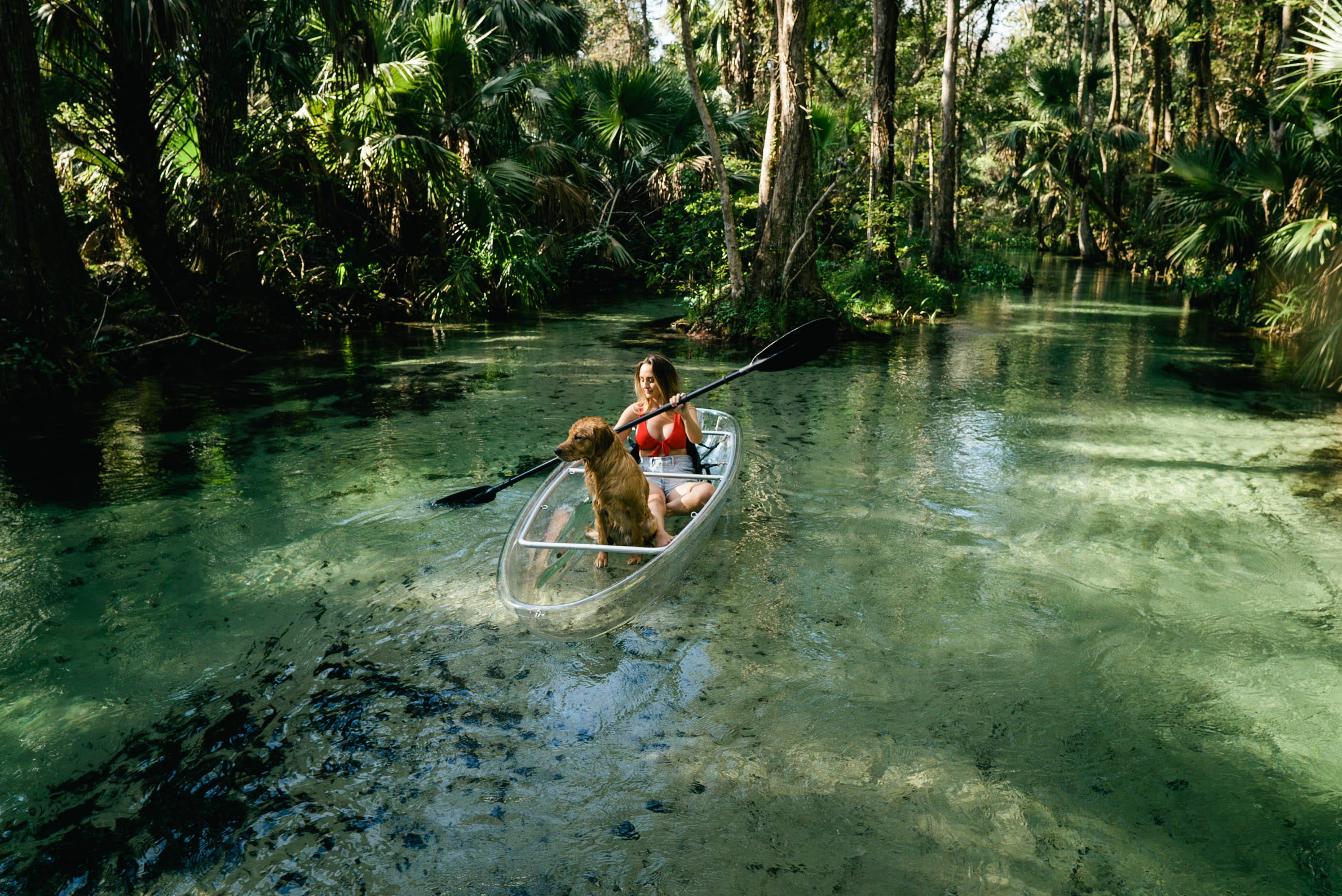 Clear kayak tours and otter-spotting in Florida offer an antidote to amusement parks