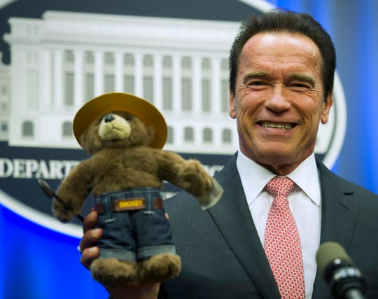 Arnold Schwarzenegger holds a Smokey Bear stuffed toy presented to him by the U.S. Forest Service during a ceremony at the Agriculture Department in Washington Oct. 30, 2013, where he was named the agency's third honorary Forest Ranger for his leadership on climate change. Multiple celebrities have taken part in the Smokey Bear campaign, including Betty White, Stephen Colbert and Sam Elliott.