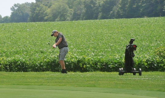 Buckeye Central's Alex Kanney chips out of the rough around the second green at Cranberry Hills.