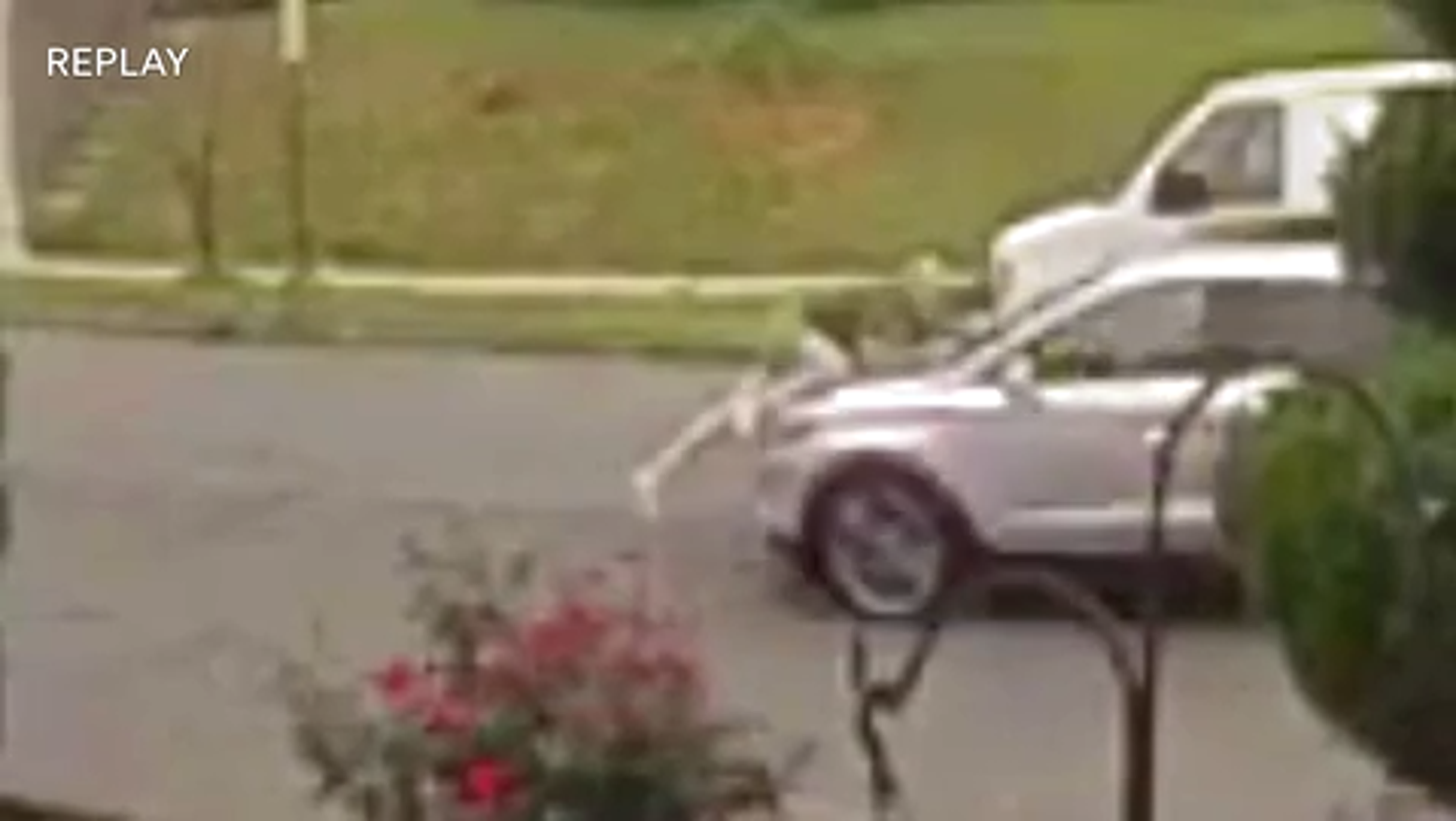 Suspected car thieves in Belleville drive with owner on hood