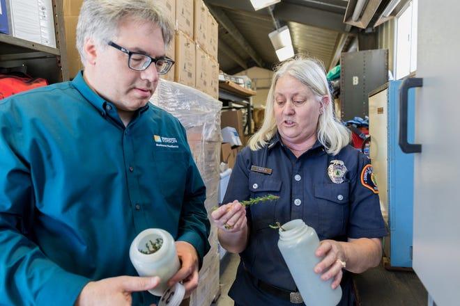 Tom Rolinski inspects sample vegetation at the SCE lab
