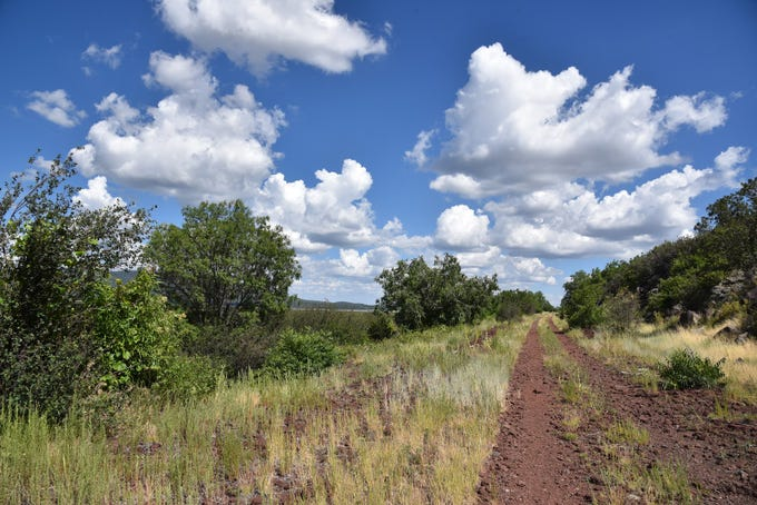 The hike follows an old frontage road above Mormon Lake.