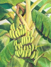 """""""Gone Bananas"""" by Lorraine Dye. Willamette Valley artists are hosting the second annual """"How We Grow Our Food"""" art exhibit atElsinore Framing and Fine Arts through the month of August."""