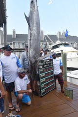 Craig Dickerson and the crew of the Haulin Ballin pose with the 465.5-pound blue marlin they reeled in Tuesday at the White Marlin Open in Ocean City.