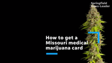 What you should know about medical marijuana in Missouri: How to get a card, what are the qualifiers and more.