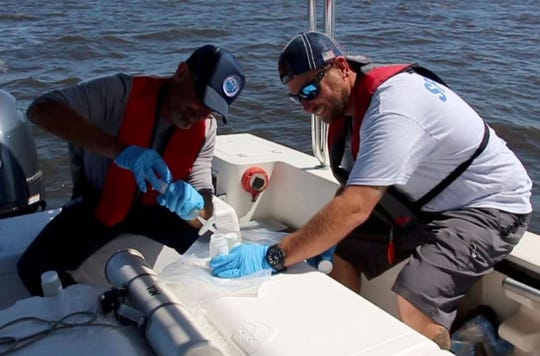 A crew from the South Florida Water Management District takes a water sample July 11, 2016, from Lake Okeechobee.