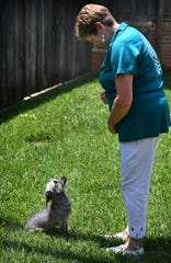 Carolyn Hardegree works on obedience training with her rescue dog, Chance.