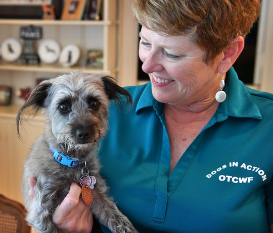 Carolyn Hardegree and her her rescue Schnoodle, Chance.