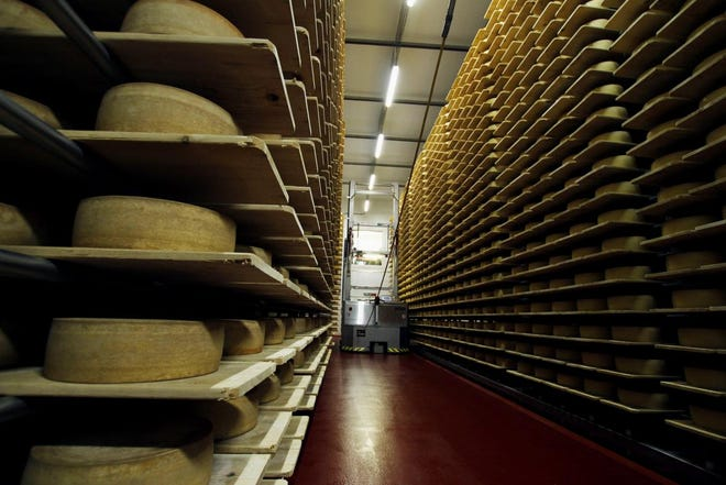 In this Feb. 27, 2017, photo, wheels of Grand Cru Surchoix cheese sit on spruce planks to age for nine months at the Emmi Roth USA production plant in Monroe.
