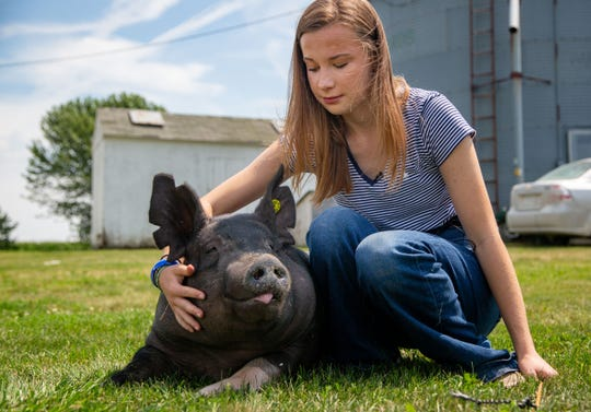 Kylee Brown, 16, works with a pig named Zeecky at her home in Dexter Iowa Monday, Aug. 5, 2019.
