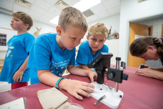 From left, Cub Scouts Owenn Waatti, 9, and Tyler Kneuss, 9, use a microscope to observe aquatic life from a local pond during a Cub Scouts STEM camp at Stage Nature Center in Troy.