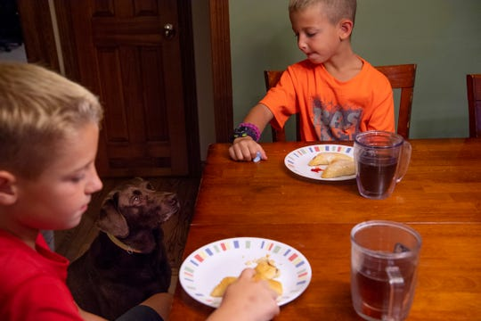 Trixie, a chocolate Labrador, sits quietly in hopes of obtaining any dropped breakfast from the plates of Eli, 9, or Ty, 7, on the first day of school Wednesday morning. The older Arrington boys, Nate, 13, and Wes, 11, had already left for middle school and the younger brothers would soon be getting a ride to their elementary school.