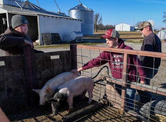 Meeting for the first time, Logan Darnell and his dad Tim pick up a pair of Hampshire-Yorkshire mix hogs from farmer Tony Biddle in Sargo, Kentucky. Logan plans on raising the hogs as a project for the Henderson County Fair AG-Days Livestock Show Saturday, March 23, 2019.