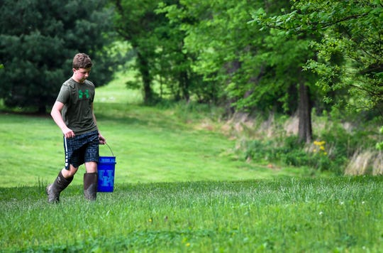 Part of his morning chores before school, Henderson County High freshman Logan Darnell carries a bucket of water out to his hog pen, so he can feed and water his two Hampshire-Yorkshire mix hogs that he is raising for the Henderson County Fair AG-Days Livestock Show Wednesday, May 1, 2019.