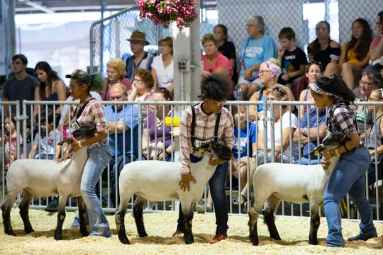 Tia Belle-Anderson, from left, 17, Raynhia Robinson, 16, and Kristine Blackwell, 17, of Vincent High School hold their lambs' heads steady while presenting in the Market Lamb Show at the Wisconsin State Fair on Wednesday. Belle-Anderson placed eighth, Robinson placed 10th and Blackwell placed ninth in the competition.