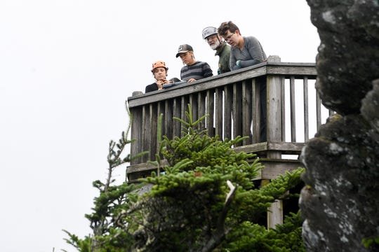 Marietta Shattelroe, Louise Barton, Chris Ulrey and Elsa Haun look over the observation deck at Roan High Bluff as they prepares to rappel to record data on geum radiatum, a member of the rose family known more commonly as spreading avens, at Roan Mountain State Park on July 26, 2019. The plant is federally listed as endangered and has been monitored on Roan Mountain since 2003.