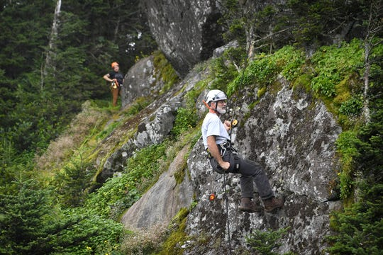 Chris Ulrey, a plant ecologist with the National Parks Service, rappels at Roan High Bluff to find and record data on geum radiatum, a member of the rose family known more commonly as spreading avens, at Roan Mountain State Park on July 26, 2019. The plant is federally listed as endangered and has been monitored on Roan Mountain since 2003.