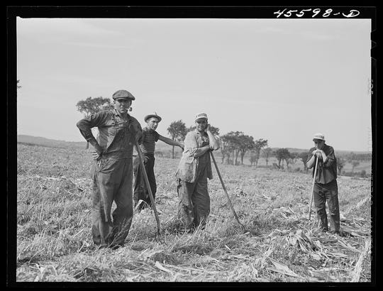 French-Canadian farmers pause while gathering corn on a farm near Sheldon, Vermont. This 1941 negative was taken by photographer Jack Delano.