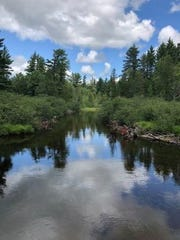 This is part of the 1,000 acres of prime forest near the Au Sable River purchased by the the Michigan Department of Natural Resources.
