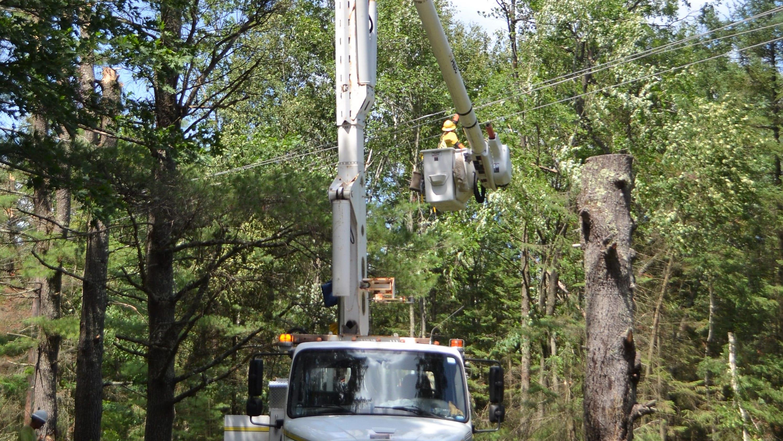 OSHA investigating fatal tree service accident in Oconto Co