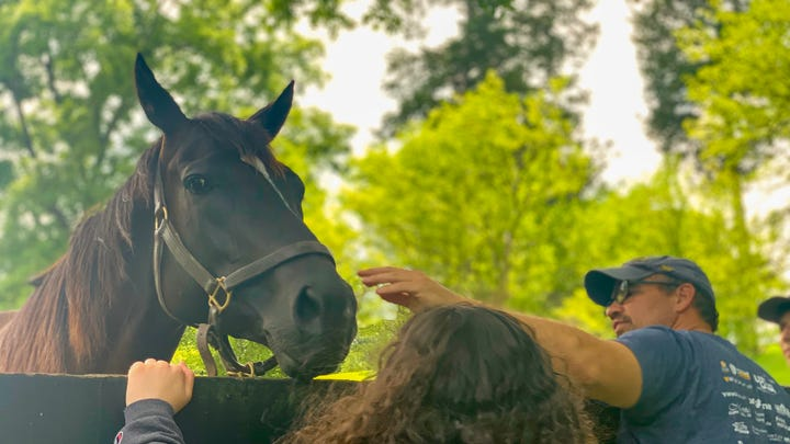 Want to get up-close-and-personal with some Derby winners? Here's how