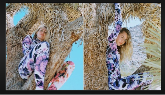 Many criticized Miley Cyrus for posing in a Joshua Tree in April 2019.
