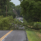Damaging thunderstorms leave thousands without power, trees and power lines down