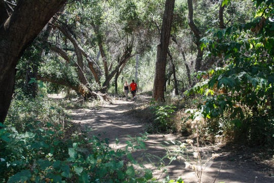 Hikers head out on a newly restored access trail near Thomas Aquinas College.