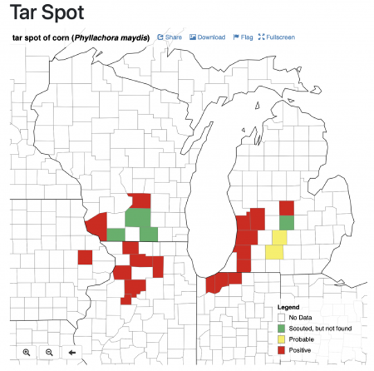 Corn IPM PIPE tar spot occurrence map as of August 7, 2019.