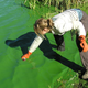 Summer means cyanobacteria in lakes