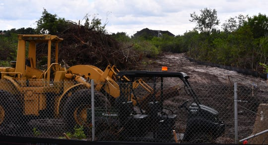 Workers are clearing trees and brush and making an exit off of the south side of Pineda Causeway, just west of the South Patrick Drive exit, to make room for the muck that will be dredged from nearby canals.