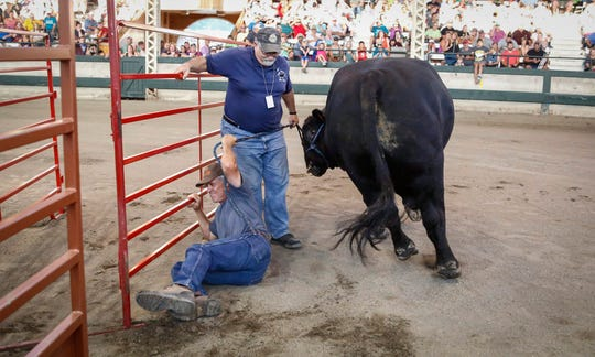 Lynn Henry of Indianola is knocked down by his Angus bull, Upward, in the Super Bull contest during the Iowa State Fair on Thursday.