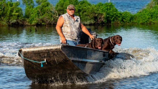 Justin Choate kills at least 120 nutria a week near his home on the Louisiana gulf coast. Between him and his three chocolate labs, they can hunt as many as 6,000 nutria a season.