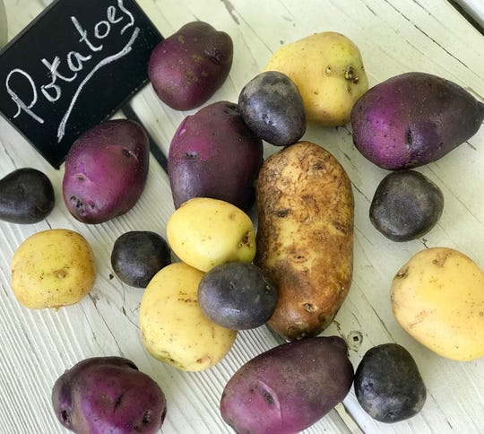 Yukon Gold, russet and Adirondack Blue are just a few of the couple hundred of potato varieties to choose from when cooking.